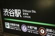 Tokyo's metro station - Shibuya - 71617263