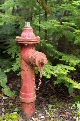 canvas print picture Old Red Fire Hydrant