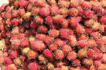 Rambutan Fruit from San Cristobal de las Casas, Mexico