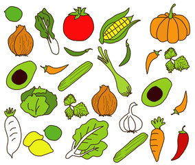 Vector of vegetables Freehand