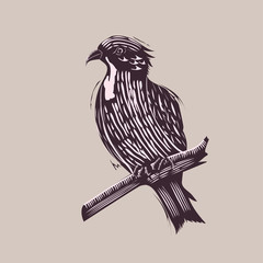 Bird in Hand Drawn Style
