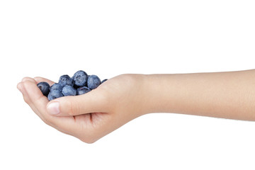 female teen hand holding washed blueberries