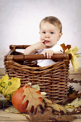 Little baby girl sitting in the wicker with pumpkin