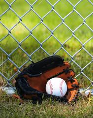 Baseball in Glove on Green Grass