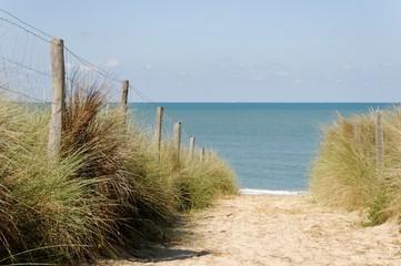 Oléron,un passage dans la dune vers l'Océan