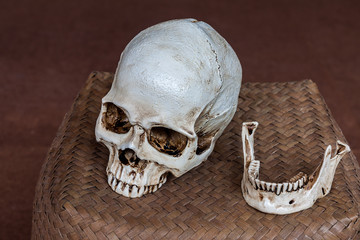 Human skull place on wicker basket