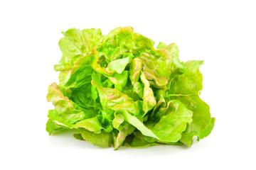 Lettuce beam