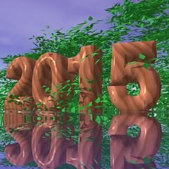 2015 - végétal/bois