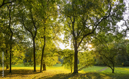 canvas print picture Herbst 08340