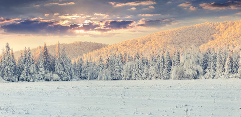 Panorama of the winter sunrise in the mountains.