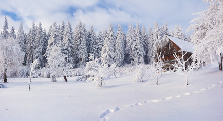 Old farm in the Carpathian mountains. Sunny winter morning. Retr