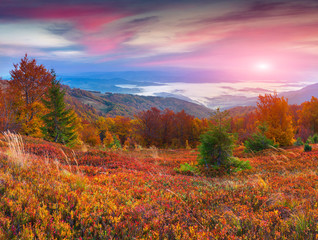Colorful autumn sunrise in the mountains