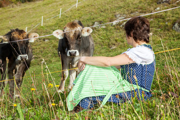 Woman in dirndl sitting in front of their cows