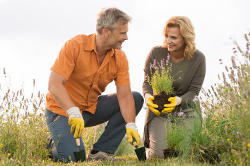 Mature Couple Gardening