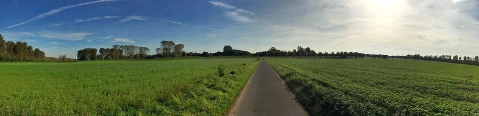 Panorama einer Straße durch Feld