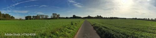 canvas print picture Panorama einer Straße durch Feld