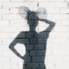 Photo of shadows of woman with ears