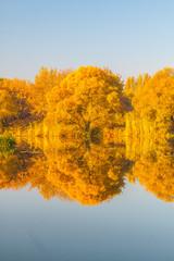 Autumn landscape 6