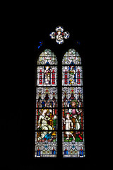 Vitrail de la collégiale Saint Martin, Colmar, Haut Rhin, Alsace
