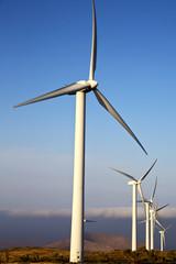 spain wind  isle of lanzarote