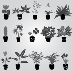 home houseplants and flowers in pot grayscale eps10