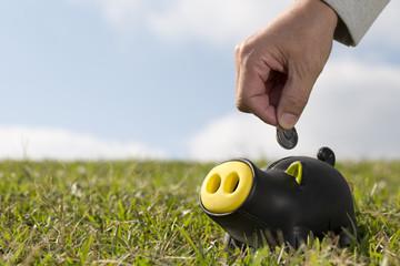 Savings black pig - Stock Image