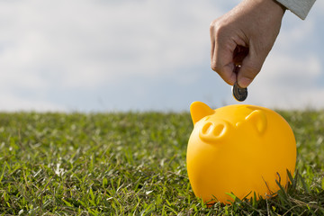 Savings yellow pig  - Stock Image
