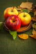 Autumn colorful sweet apple on the table