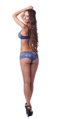 Attractive underwear model posing back to camera