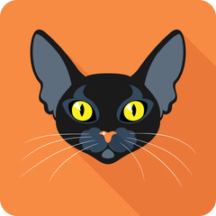 Bombay Black Cat icon flat design