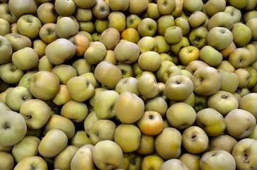 Pommes en vrac