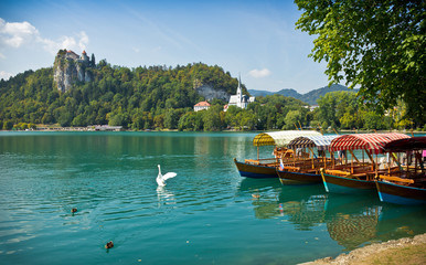 boats on Lake Bled horizontal with swan