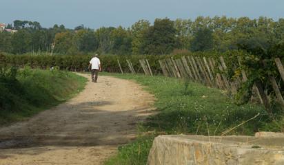 Promeneur dans le sud de la France