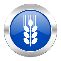 grain blue circle chrome web icon isolated