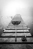 Fly fishing set on the bridge in monochrome