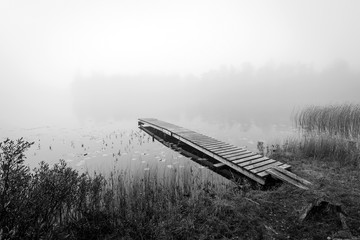 Monochromatic autumn view for Swedish lake