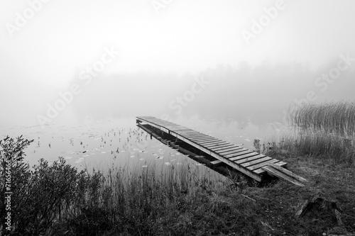 monochromatyczny-widok-jesien-dla-szwedzkiego-jeziora