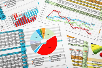 Business Reports in Multicolor Charts