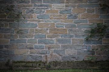 Hintergrund – gelb grüne Sandsteinmauer