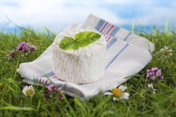 Fromage - Bleu de Bresse