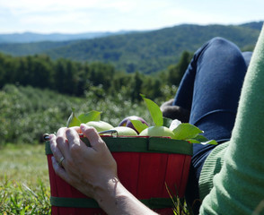 Woman Relaxing on Ground With Apple Basket Wide
