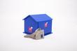 Mavi evim