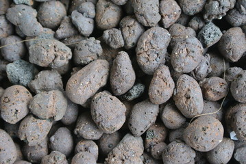 Fertilizer granules closed up
