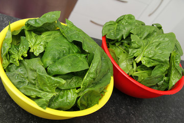 Fresh spinach in a bowl