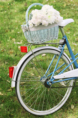 Bicycle with flowers in metal basket on park background