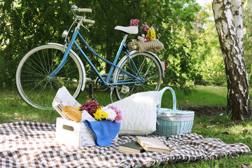 Old bicycle and picnic snack