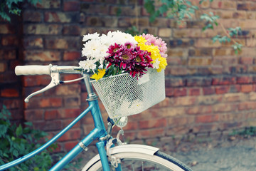Old bicycle with flowers in metal basket on old wall background