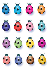Sixteen Colorful Ladybugs