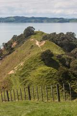 grassy hills at Duder Regional Park
