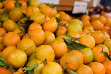 fresh clementines.